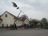 Stavění májky 2013