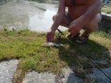 Rybářské závody / červenec 2015